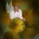 The Wattle Flower Angel by StarKatz