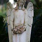 Johnny's Angel by Bernadette Watts