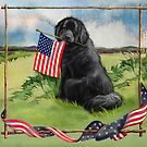Newfie and American Flag by Patricia Reeder Eubank