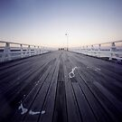 pier by Sue Hammond