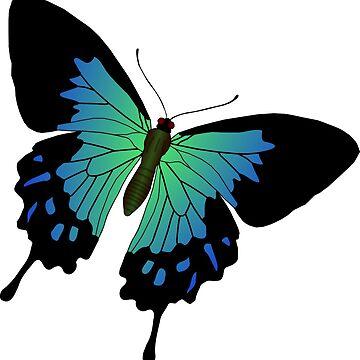 Butterfly art by belka