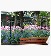 Tulips in Butchart Gardens Plaza Poster