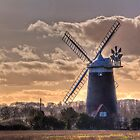 Winter's Afternoon in Norfolk. by Viv Thompson