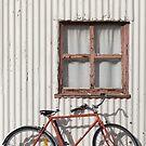 Postie Bike by Linda Lees