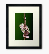 Pole Dancer Framed Print