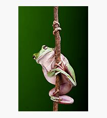Pole Dancer Photographic Print