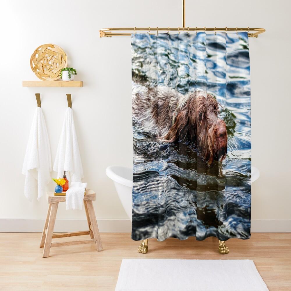 Brown Roan Italian Spinone Dog Swimming Shower Curtain
