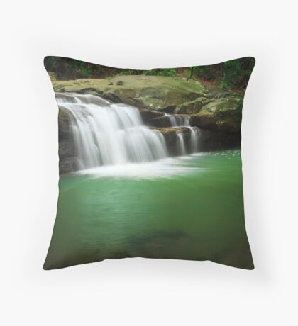 Emerald Pool Throw Pillow