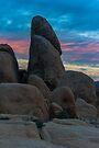 Joshua Tree Sunset White Tank by photosbyflood