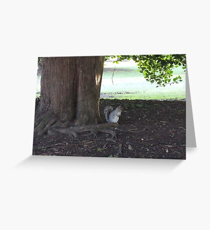 At The Root Of It Greeting Card