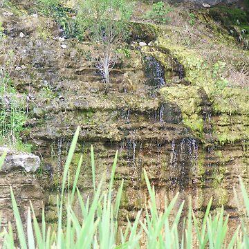 Hillside Falls by RainWolf