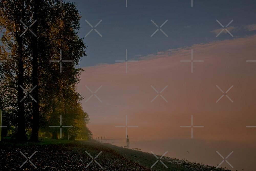 Foggy Morning by MaluC