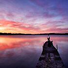Stunning skies by LadyFi