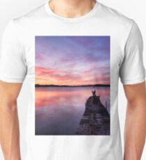 Stunning skies Unisex T-Shirt