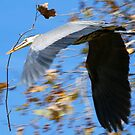 Fly With Stick by saseoche