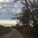 Levee Walk by Barbara Wyeth