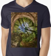 Squirrel Sculpture in Prehen Woods, Derry - Sky In Men's V-Neck T-Shirt