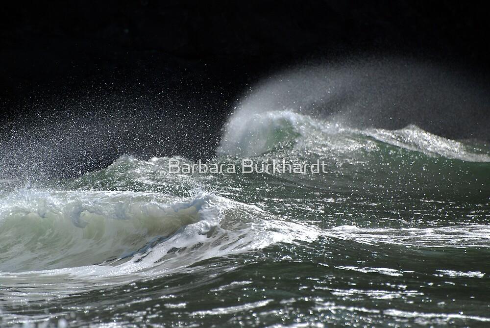 Wave Action - Three ~  by Barbara Burkhardt