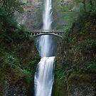 Over Flow - Multnomah Falls Oregon by Barbara Burkhardt