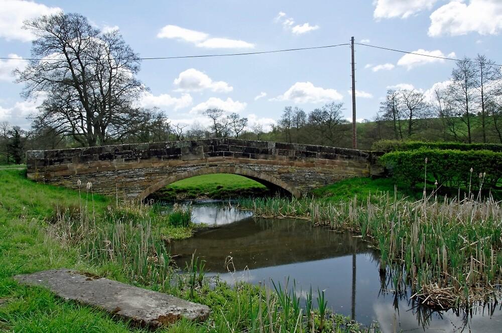 St Mary's Bridge - (east), Thorpe  by Rod Johnson