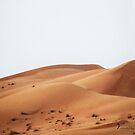 Dubai Desert - UAE by Yannik Hay