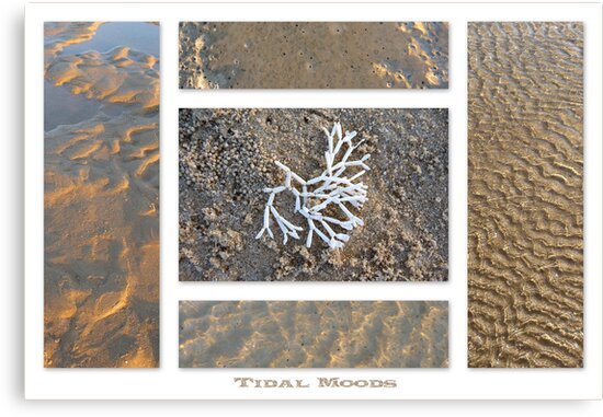 Tidal Moods by Magee