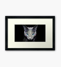 Blue Eyed Cat in the Shadows Framed Print