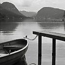 Lake Bohinj by John Burtoft