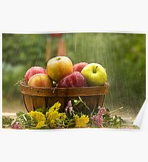Apples in the Rain Poster