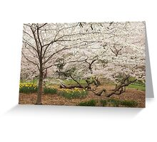 Central Park NYC Greeting Card
