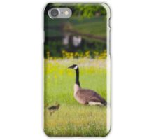 CANADA GOOSE WITH HER GOSLINGS iPhone Case/Skin