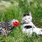 ~ You say chicken/ I say egg! ~ by Nadya Johnson