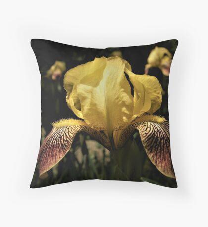 Yellow Iris With Maroon Falls Throw Pillow