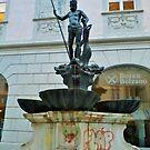 Bolzano Fountain, Italy. by clarebearhh
