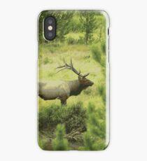 Bull Elk Illustration iPhone Case