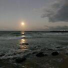 Moon over Point Danger by Annie Smit