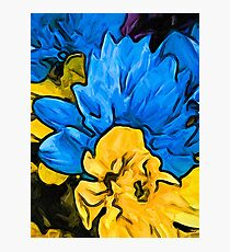 The Embrace of the Blue and Yellow Flowers Photographic Print