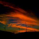 The great Aussie skyline by Colleen Milburn