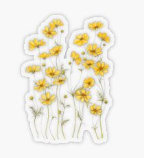 Gelbe Kosmosblumen Transparenter Sticker