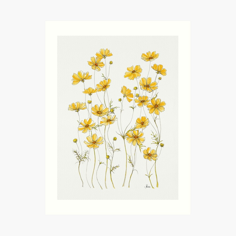 Yellow Cosmos Flowers Art Print