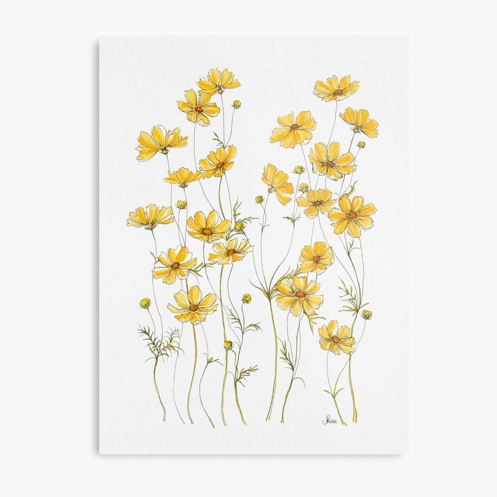 Gelbe Kosmosblumen Metalldruck