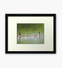 Tranquil Family Framed Print