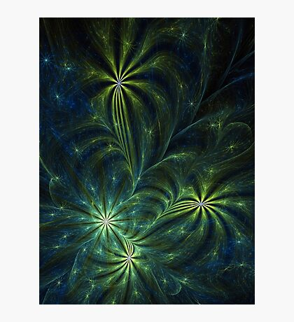 Weed - Abstract Fractal Artwork Photographic Print