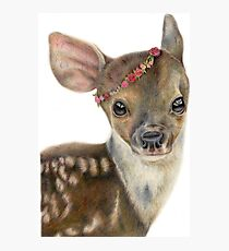 Spring Fawn Photographic Print
