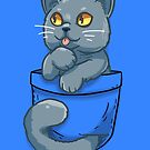 Pocket Cute British Shorthair Cat by TechraNova