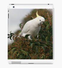 Sulphur Crested Cockatoo iPad Case/Skin