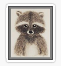Hand-drawn Raccoon  Sticker