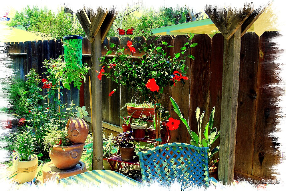 Our Patio Garden by davesdigis