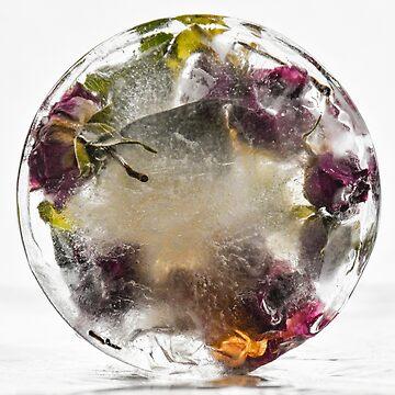 Frozen beauty *6 by Inese