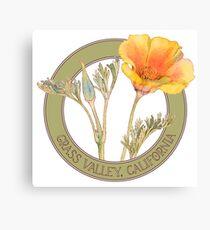 Grass Valley Poppy Canvas Print